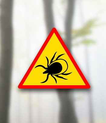 https://biolumed.pl/wp-content/uploads/2018/04/bolerioza-1.jpg
